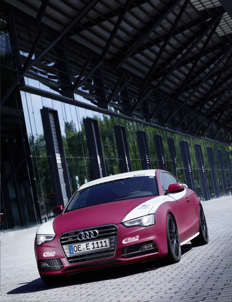 Eibach-Audi-S5 (6)